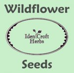 British Wildflower Seeds