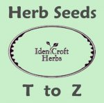 herb seeds T to Z