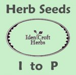 herb seeds I to P